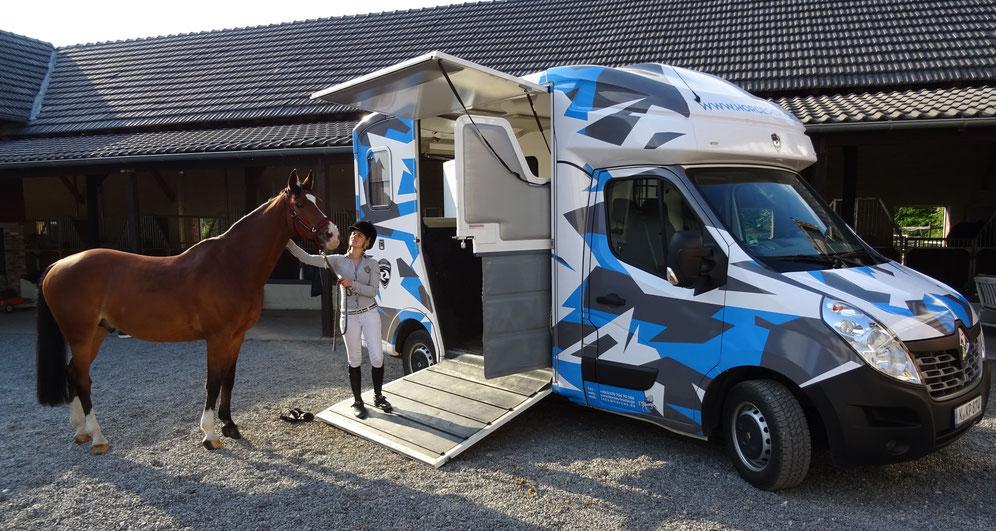 2 pferdetransporter k ln horces. Black Bedroom Furniture Sets. Home Design Ideas